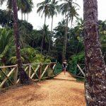 aguisur-caribetours-besucher-Gandoca-Manzanillo-Schutzgebiet