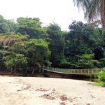 aguisur-caribetours-bridge-Gandoca-Manzanillo-Schutzgebiet