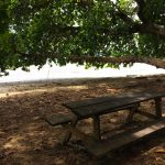 aguisur-caribetours-cahuita-strand-bank