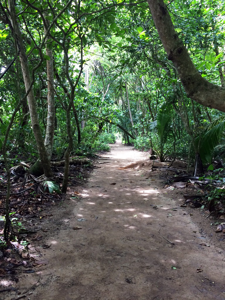 aguisur-caribetours-cahuita-weg