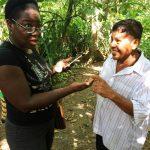 aguisur-caribetours-costarica-project-bibri-besucher