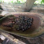 aguisur-caribetours-costarica-project-bibri-chocolade