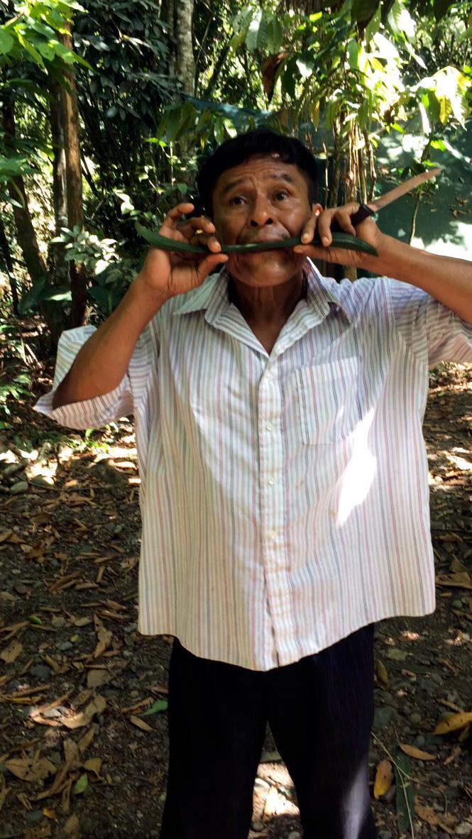 aguisur-caribetours-costarica-project-bibri-einheimischer