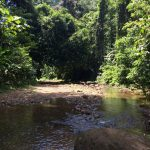 aguisur-caribetours-costarica-project-bibri-fluss