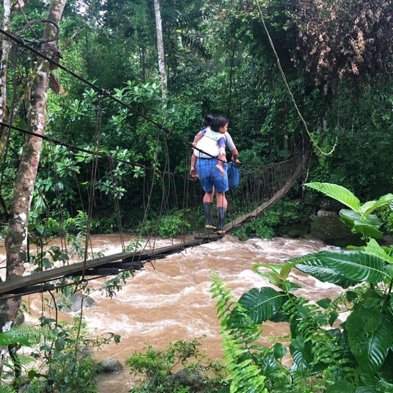aguisur-caribetours-costarica-reservat-bibri