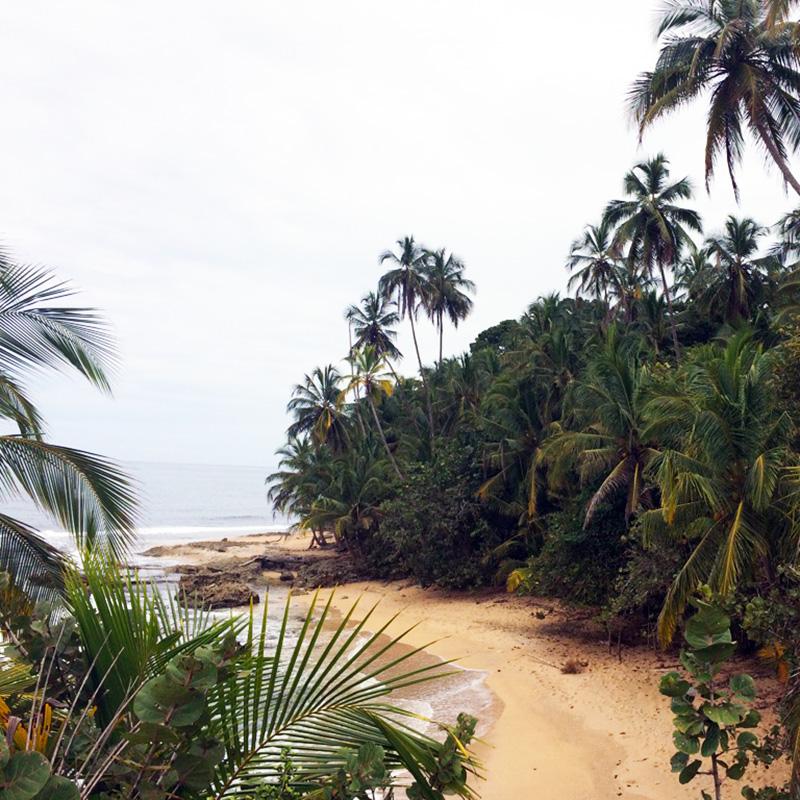 aguisur-caribetours-strand-Gandoca-Manzanillo-Schutzgebiet-q