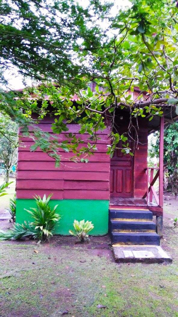 aguisur-caribetours-tortuguero-cabina