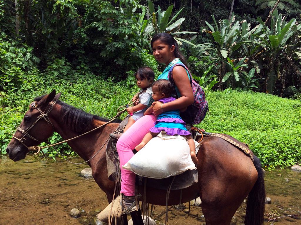 aguisur-costarica-caribetours-landausflug-pferd-bibri-indianerreservat-natur-und-kultur