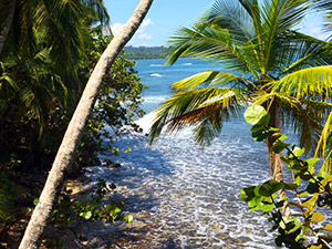 aguisur-costarica-caribetours-naturreservat-manzanillo
