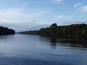 aguisur-costarica-tortuguero-morgendlcihe-bootstour-kanalsystem